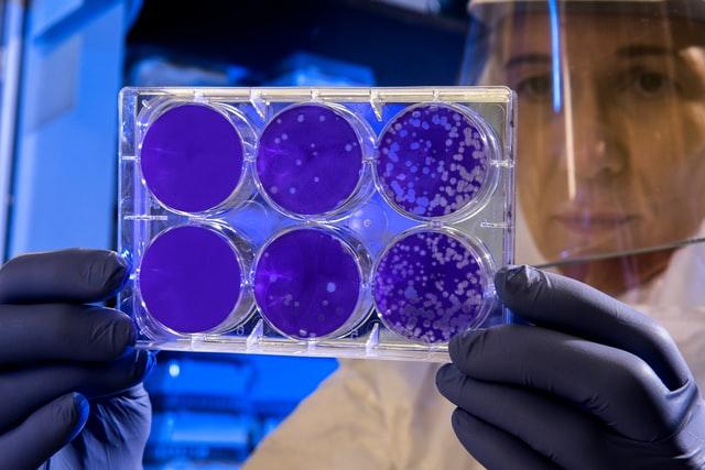 США знали про коронавірус ще восени