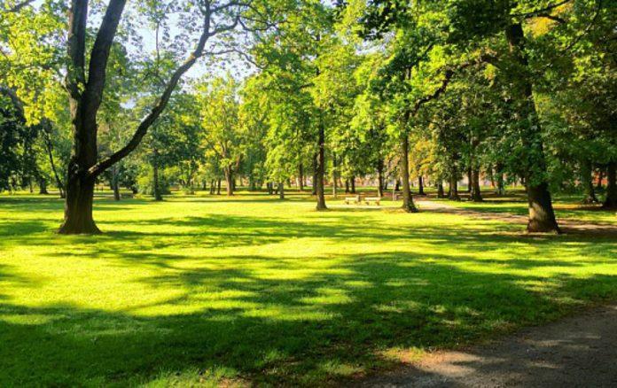 Завтра відбудеться загальноміська толока в міському парку відпочинку населення «Здоров'я»
