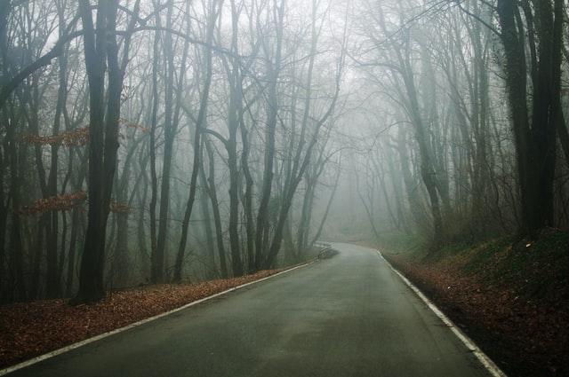 Синоптики попередили про туман в Україні