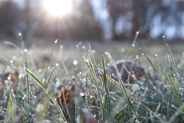 Синоптики обіцяють українцям перші заморозки і мокрий сніг вже цього тижня